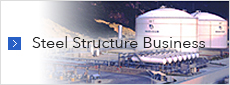 Steel Structure Business