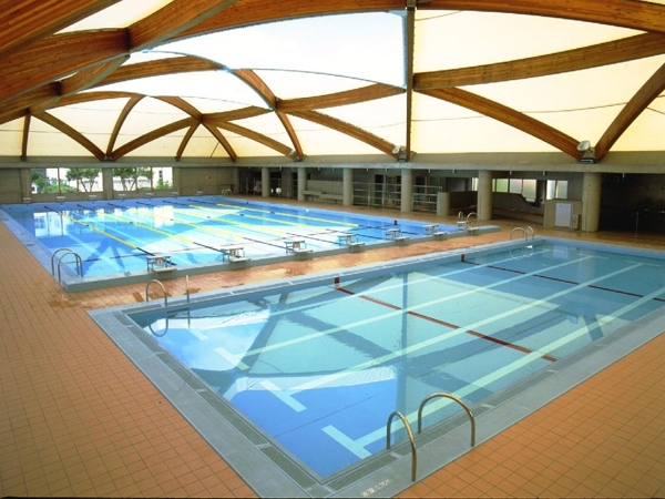 Swimming pool (stainless steel)